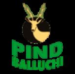 PIND BALLUCHI , PARK BALLUCHI